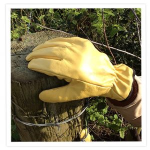 Lined Leather Gloves, Gardening Gloves
